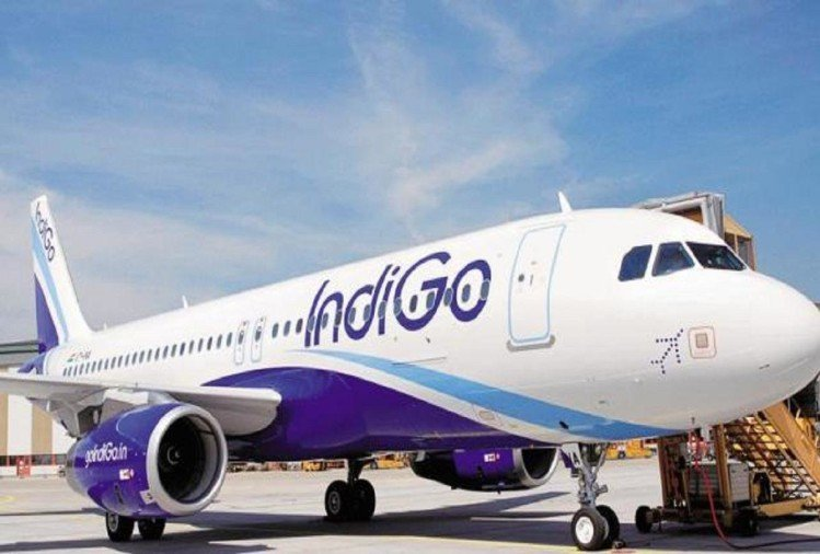 SEBI and government investigating Indigo operational flaws
