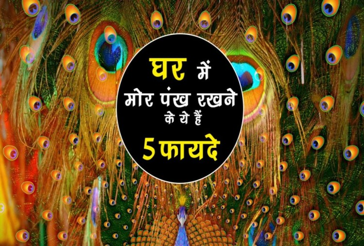 Janmashtami Special 2018: Know 5 Divine Aspects of Krishna Peacock Feathers