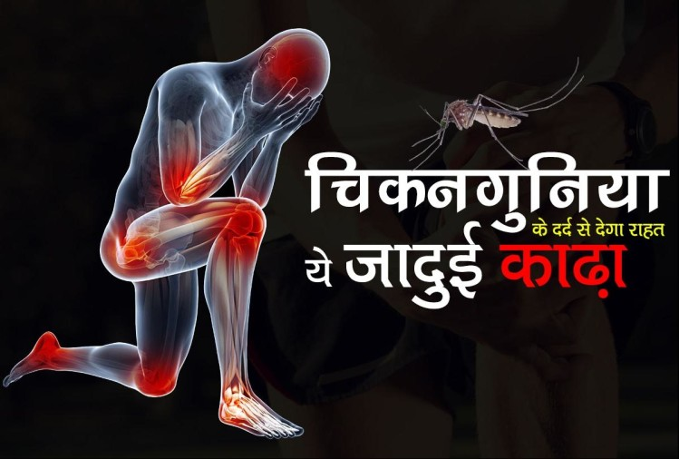 chikungunya home remedy: Joint Pain After Chikungunya this magical home remedy can help you