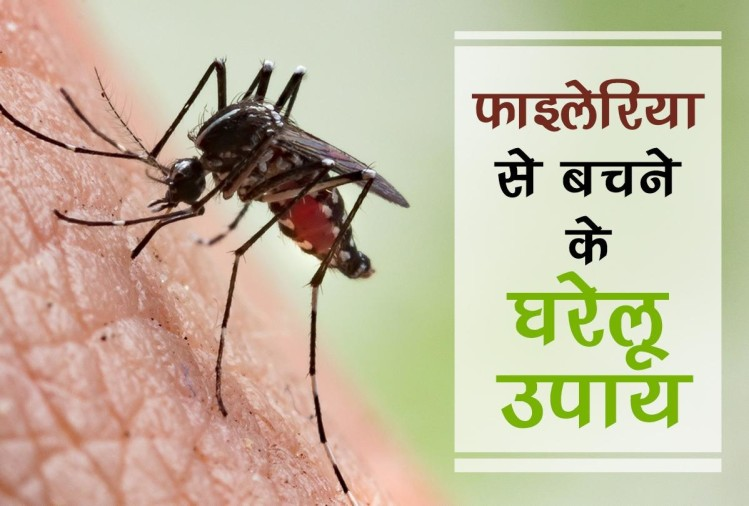 Home Remedies for Elephantiasis spread by mosquitoes