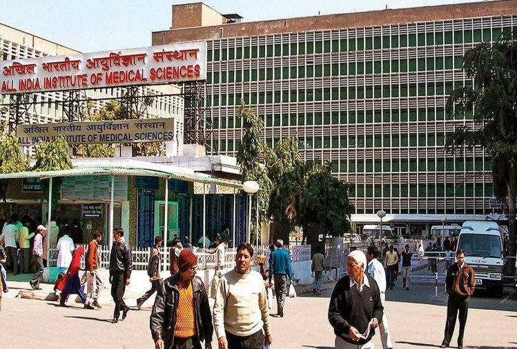 AIIMS Delhi Recruitment 2019 know how to apply sarkari naukri