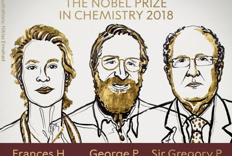 The Royal Swedish Academy of Sciences decided to award the Nobel Prize in Chemistry 2018