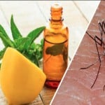 Home remedies to get rid of dengue malaria mosquitoes with the lemon