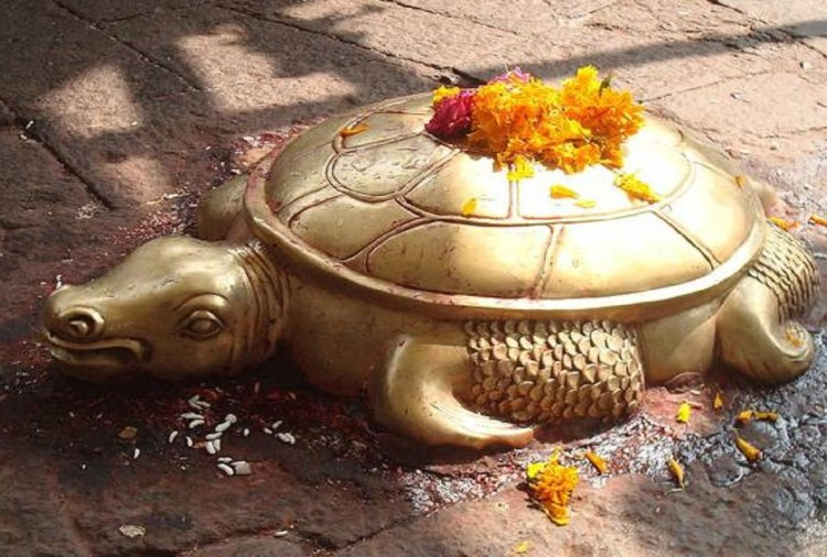 fengshui tips benefits of tortoise in home