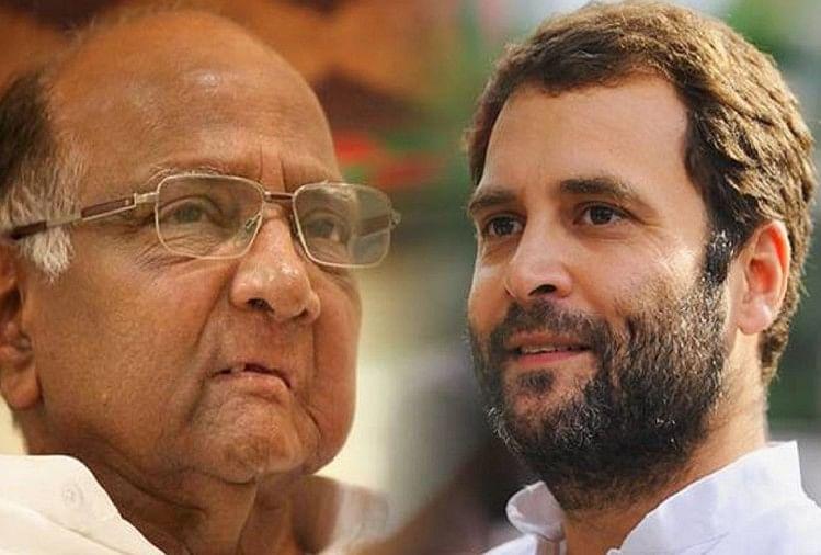 Rahul Gandhi And Sharad Pawar Discussed Over Lok Sabha Election - राहुल,  शरद पवार ने लोकसभा चुनाव के लिए सीटों के बंटवारे पर की चर्चा - Amar Ujala  Hindi News Live