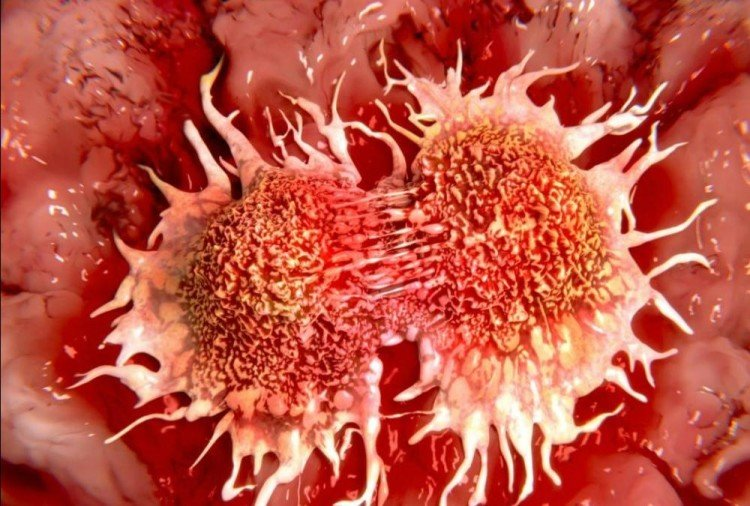 cancer disease increasing in youth of himachal