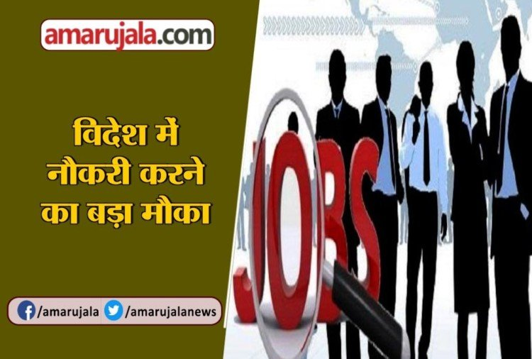 sarkari naukri OPSC Recruitment 2019 Vacant Posts, know how to apply sarkari jobs