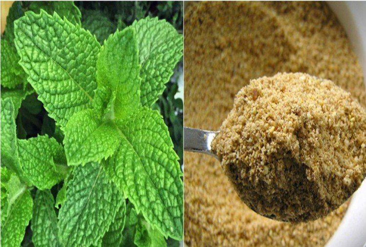 Know the amazing health benefits of mint and Hing or asafoetida