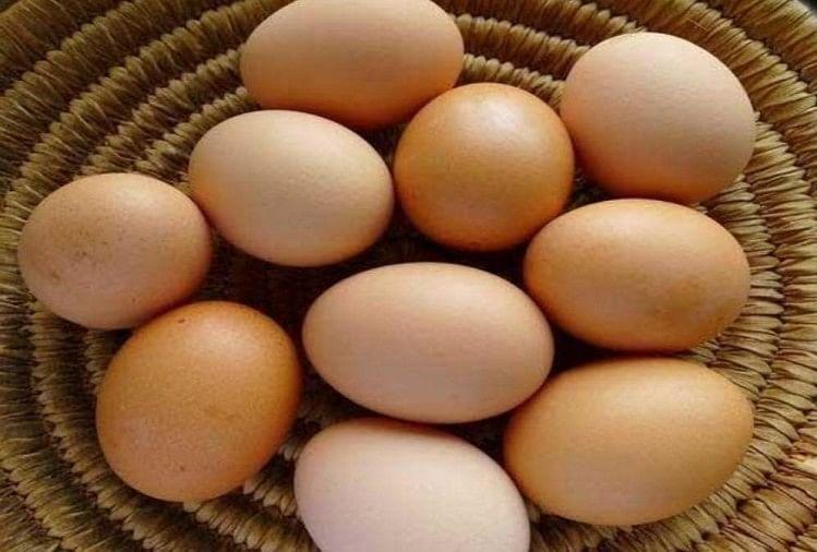 Image result for अंडे खाने से चली जाएगी जान