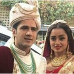 Parul Chauhan married wedding