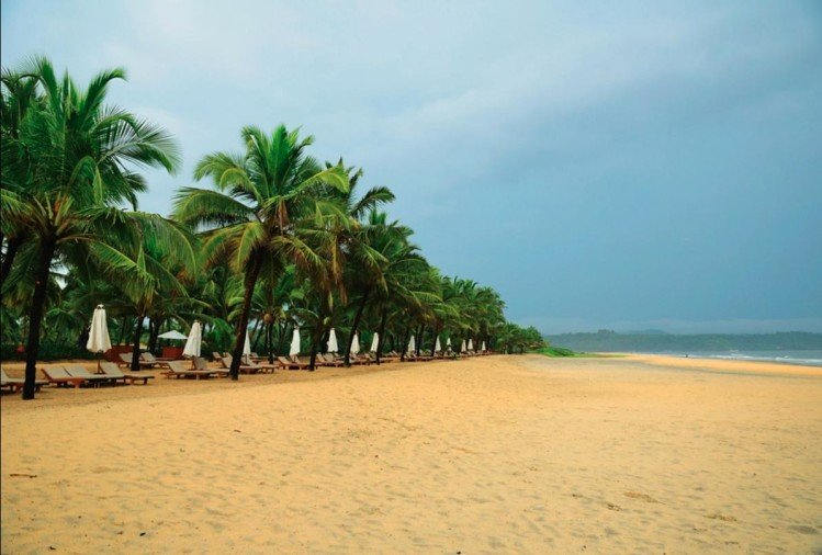 plan a trip to goa in monsoon and visit exciting places