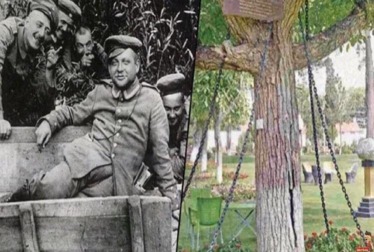 under-arrest-tree-from-120-years-in-pakistan