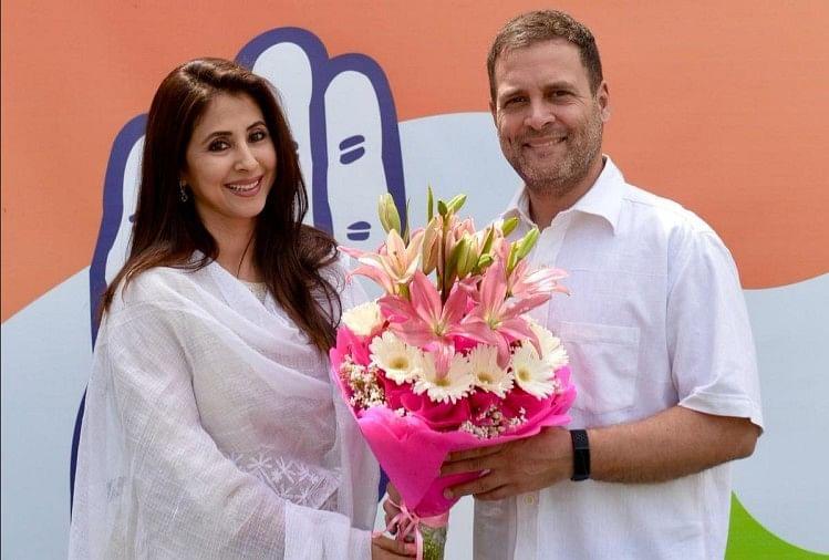 Image result for रंगीला गर्ल उर्मिला मातोंडकर कांग्रेस