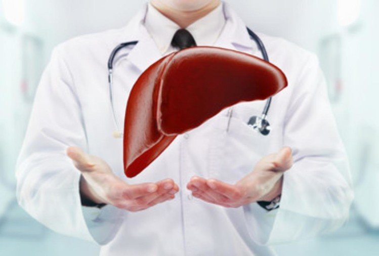 world liver day 2019 know fatty liver disease symptoms causes and treatment