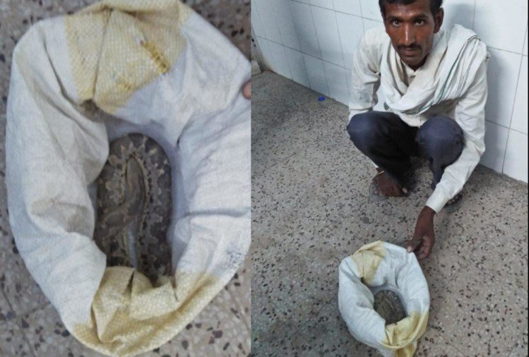 A villager brought snake to a hospital in Bahraich.