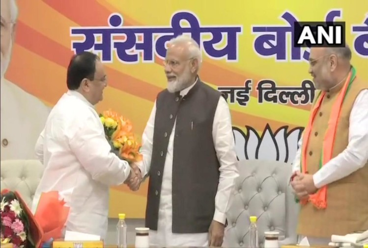 J P Nadda elected as the BJP National Working President