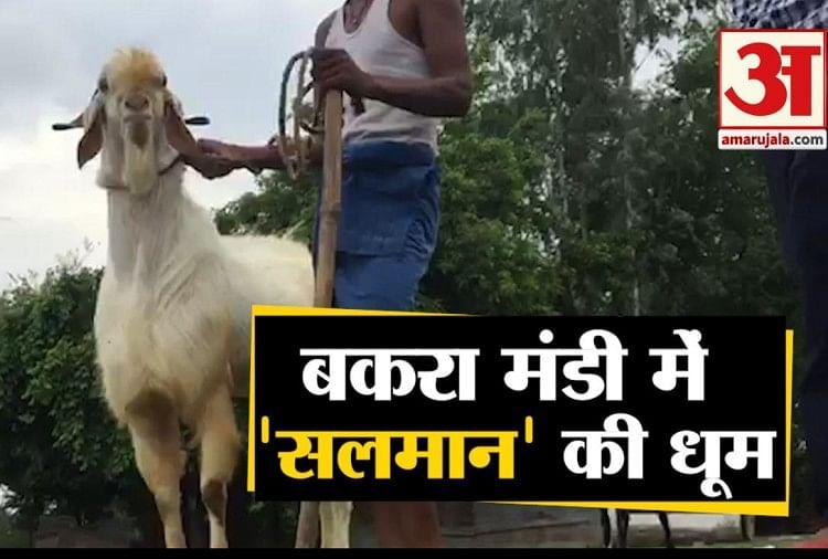 Ambedkar Nagar News In Hindi, Latest अम्बेडकर नगर