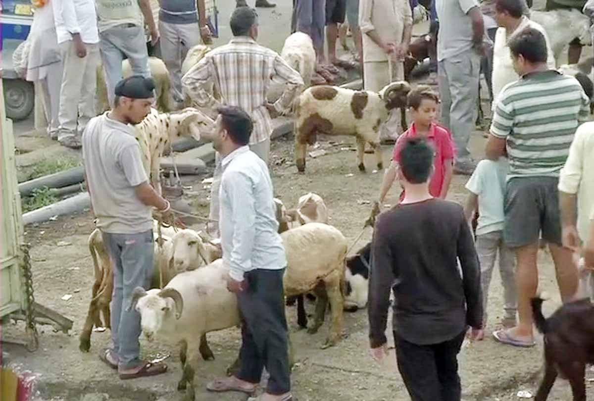 बाजार में बकरे खरीदने के लिए लगी भीड़