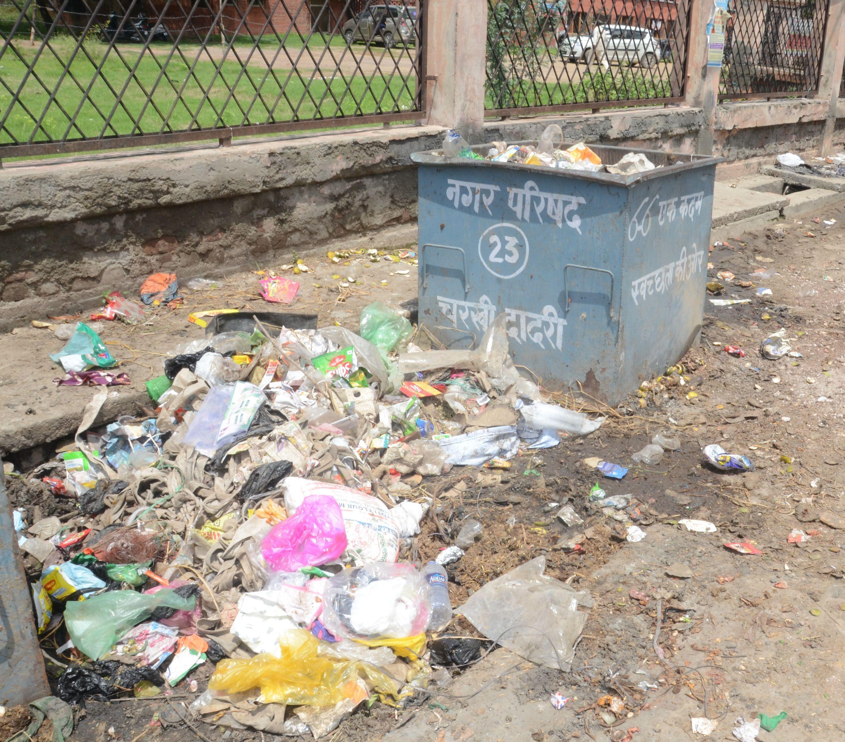 शहर में सड़क किनारे बने डंपिंग प्वाइंट पर पड़ा कचरा।