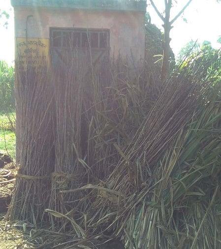 ओडीएफ के दावे खोखले, खुले में शौंच जा रहे ग्रामीण