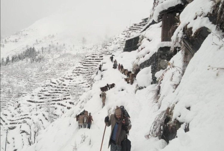 heavy snowfall in himachal, 300 hundred roads closes, Know the situation of the state from pictures