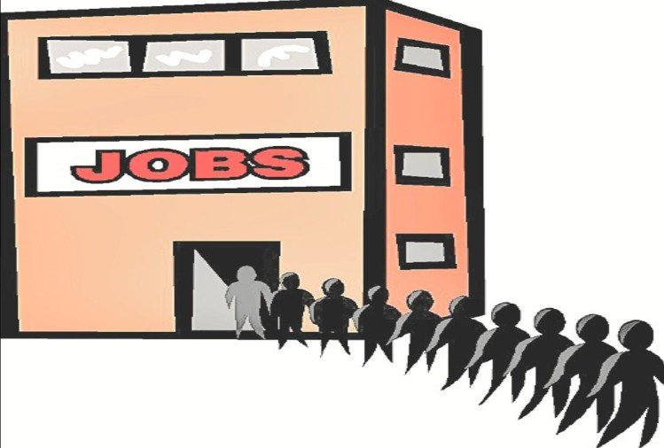 Private companies opened the doors of employment, more than two thousand posts will be filled