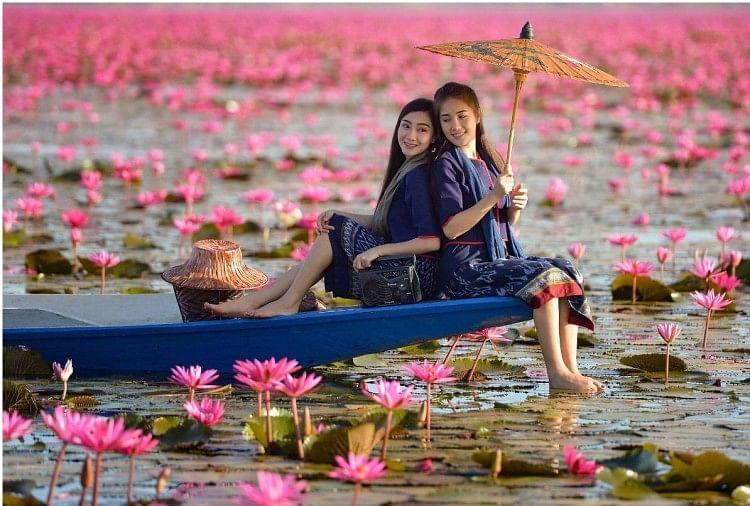 Image result for lily lake,nari