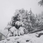 Fresh Snowfall in Lahaul Spiti Rohtang Pangi Chamba and kullu