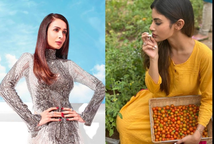 malaika arora to mouni roy making food in self quarantine period