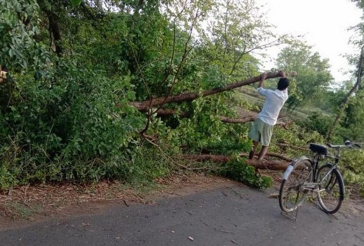 वाराणसी समेत पूर्वांचल के जिलों में तेज आंधी के साथ हुई बारिश से फसलों को काफी नुकसाना पहुंचाया है। कई जिलों में पेड़ गिरे हैं। गेंहूं-धान की फसल बर्बाद हो गई है। गाजीपुर में दो युवक बिजली गिरने से झुलस गए हैं...
