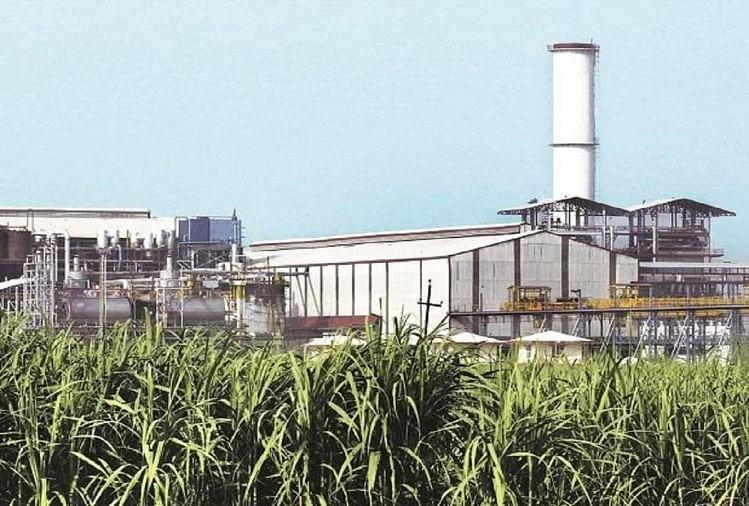 पंजाब में अब चीनी मिल करेंगी अल्कोहल का उत्पादन