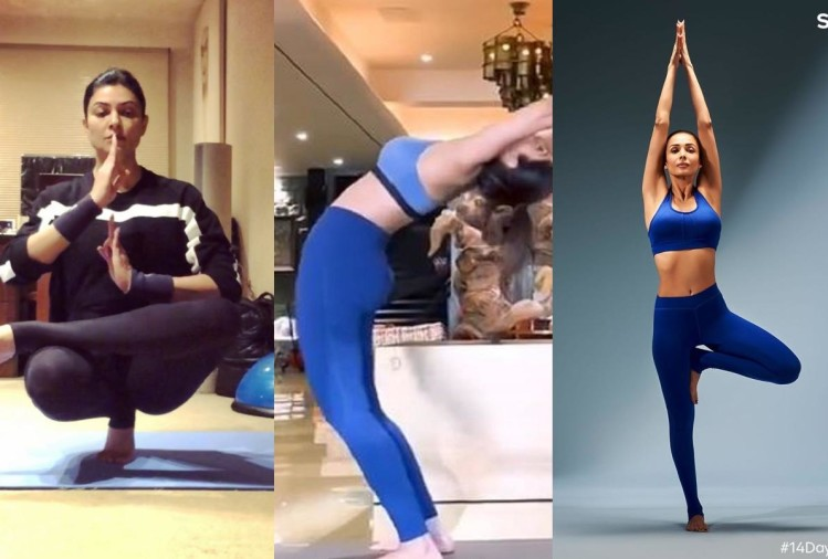 international yoga day see toughest yoga pose doing by bollywood actresses in pictures