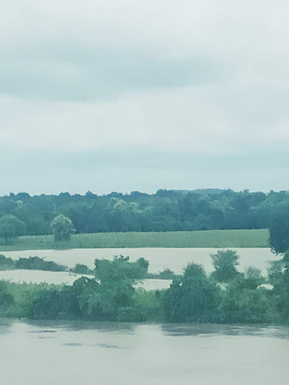 कैप्सन- 2- 3- खेत में भरा पानी 4- जलमग्न फसल में खड़ा किसान 5 -किसान नेता केशवेन्द्र सिंह 6-सियाराम लोधी 7-