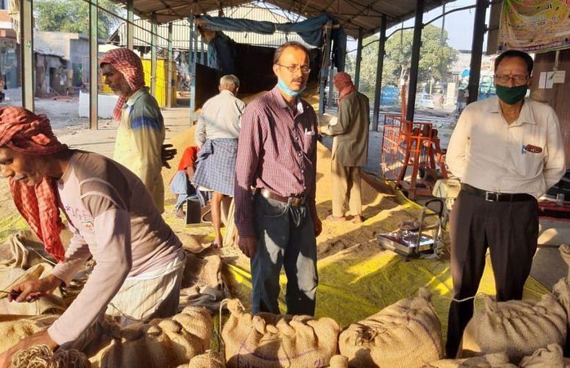 रद्रपुर गल्ला मंडी में आरएफसी के केंद्र पर धान बेचता किसान।