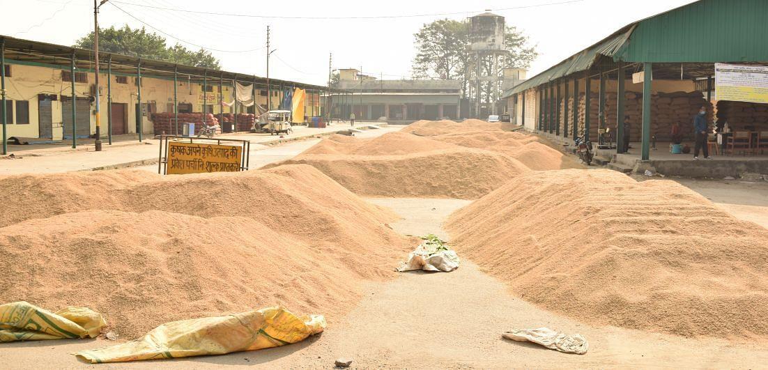 रुद्रपुर के बगवाड़ा मंडी स्थित धान क्रय केंद्र परिसर में तुलने को पड़ा धान।
