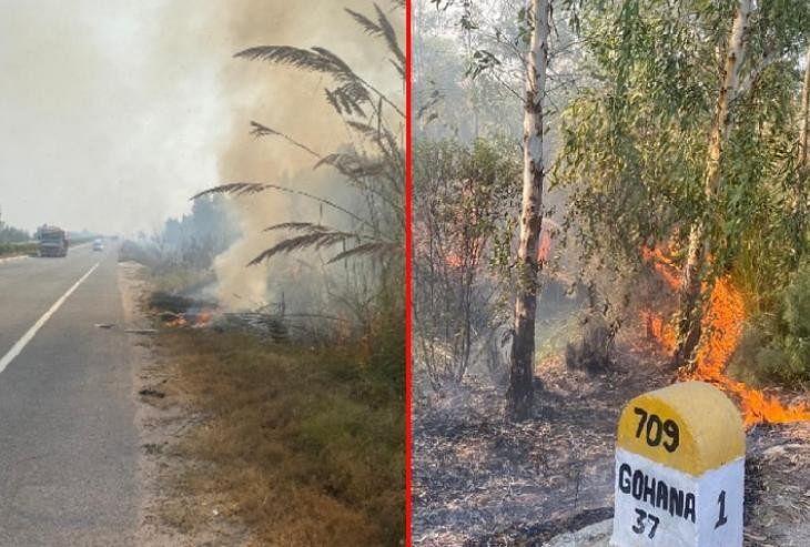राजमार्ग किनारे हरियाली में लगी आग।