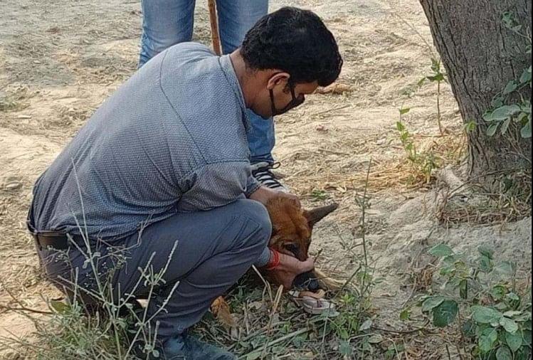 घाटमपुर में सामूहिक दुष्कर्म के बाद बच्ची की निर्मम हत्या