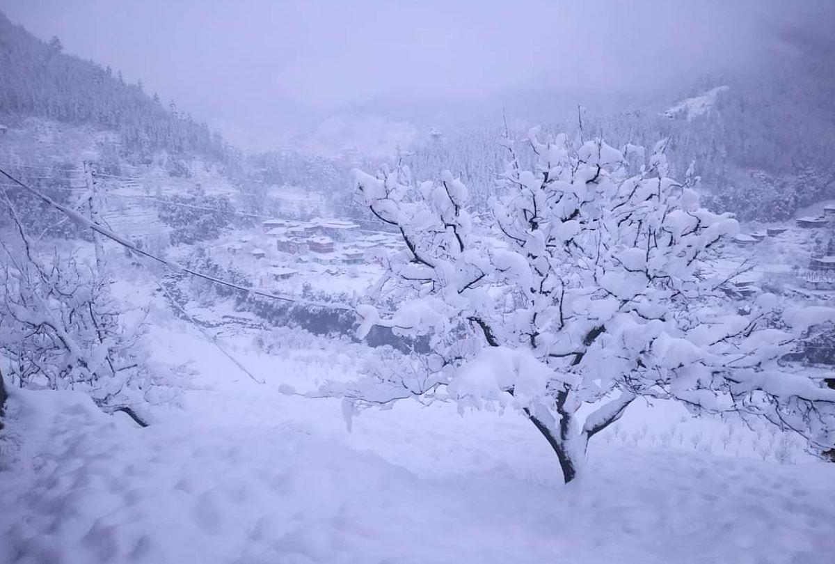 बर्फ से लकदक सराज घाटी