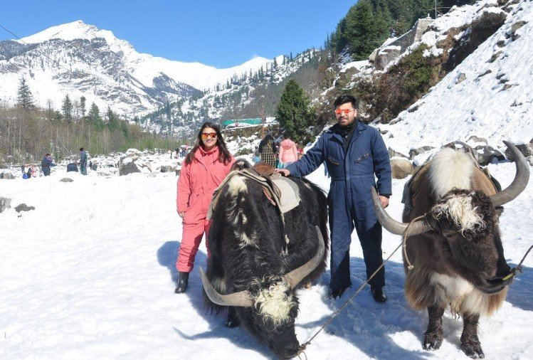 snowfall in himachal: Scenic view of snowfall images in Manali snowfall images in solang nala himachal