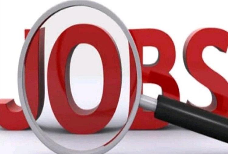 UP High Court Recruitment 2021: इलाहाबाद हाईकोर्ट में निकली हैं इन पदों पर भर्तियां, क्या आपको है इसकी जानकारी