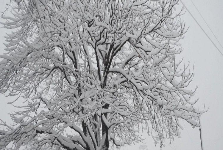 मौसम: आठ जिलों में भारी बारिश-बर्फबारी का ऑरेंज अलर्ट