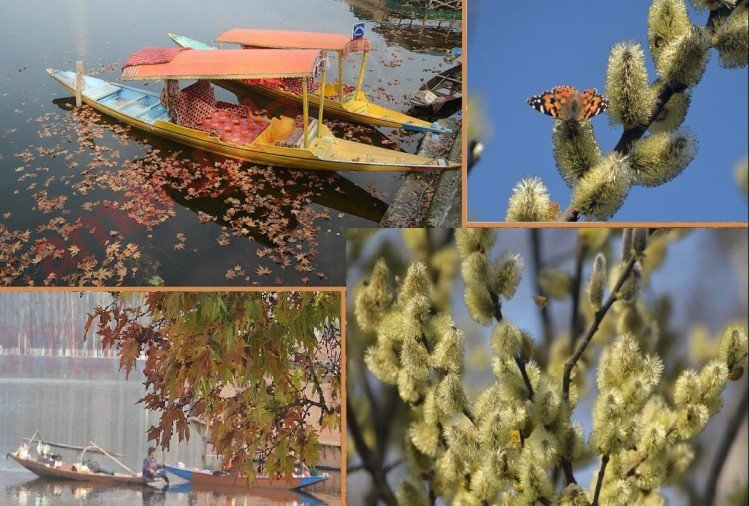 Amazing places of Srinagar nestled in the lap of heaven: It is amazing in the scorching heat here
