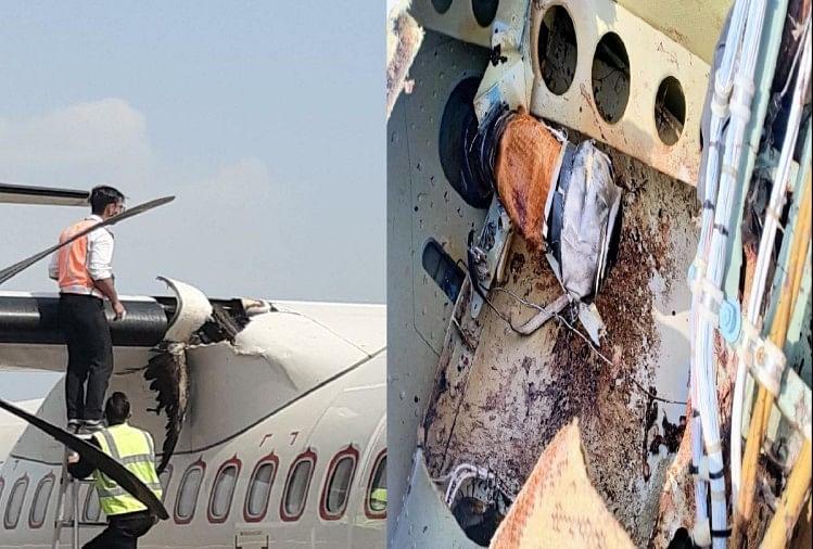 हिमाचल प्रदेश: गगल में विमान से टकराया पक्षी, बाल-बाल बचे 45 यात्री