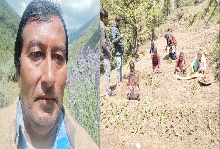 सरकारी नौकरी छोड़ शुरू की औषधीय पौधों की खेती, अब 150 लोगों को दिया रोजगार