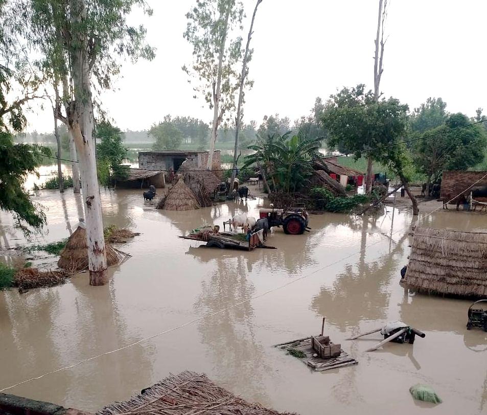 चांदपुर जलीलपुर खादर क्षेत्र में गंगा का जल स्तर बढ़ने से गांव में भरा पानी।