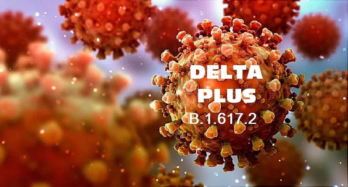 Covid-19: 60 Samples Sent From Indore To Delhi To Detect Delta Plus, Genome  Sequencing Will Be Done - कोविड-19: डेल्टा प्लस का पता लगाने के लिए इंदौर  से दिल्ली भेजे 60 नमूने,