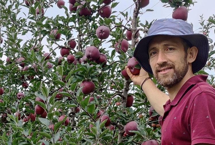 हिमाचली सेब पहली बार चखेंगे दुबई के शेख, एयर कार्गो में भेजा जाएगा