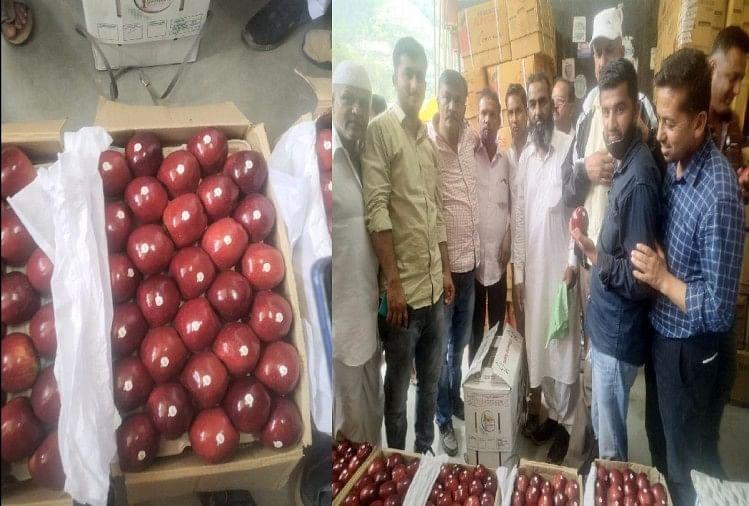 संकट के बीच 140 रुपये किलो बिका एप्स वैरायटी का सेब
