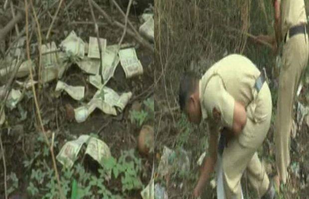 lakhs of old notes found on tree in maharashtra aurangabad