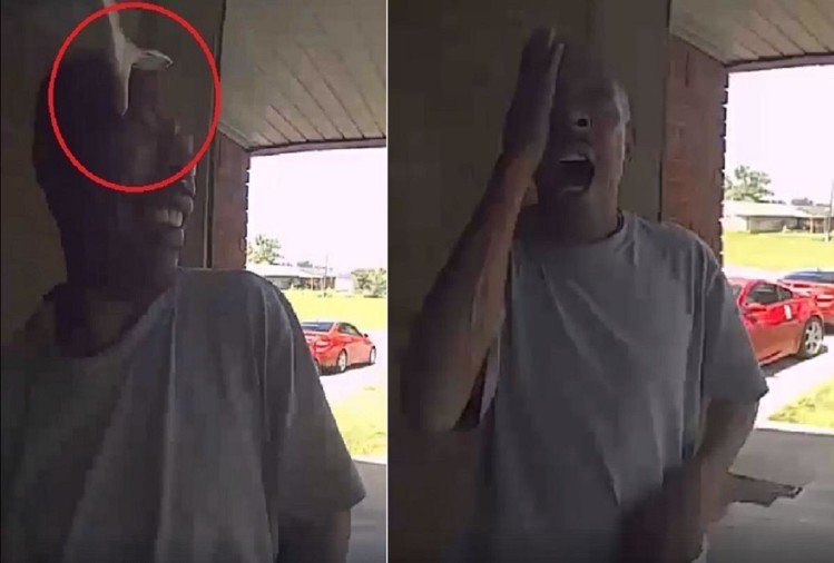 Snake bites a man as soon as he opens the door Video Viral on Social Media